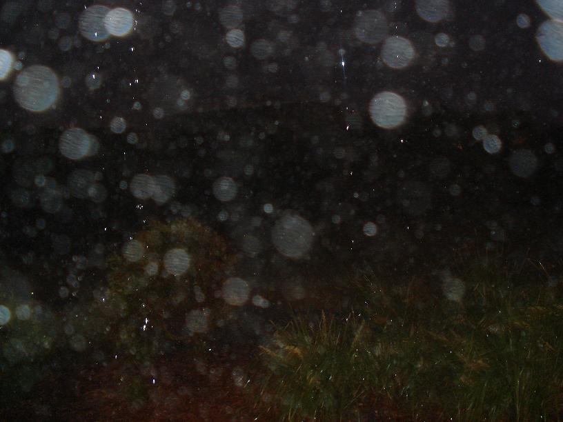 http://forum.noblerealms.org/pics/1507_australia_storm_009.jpg