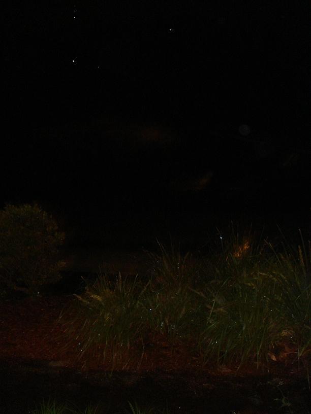 http://forum.noblerealms.org/pics/1507_australia_storm_024.jpg