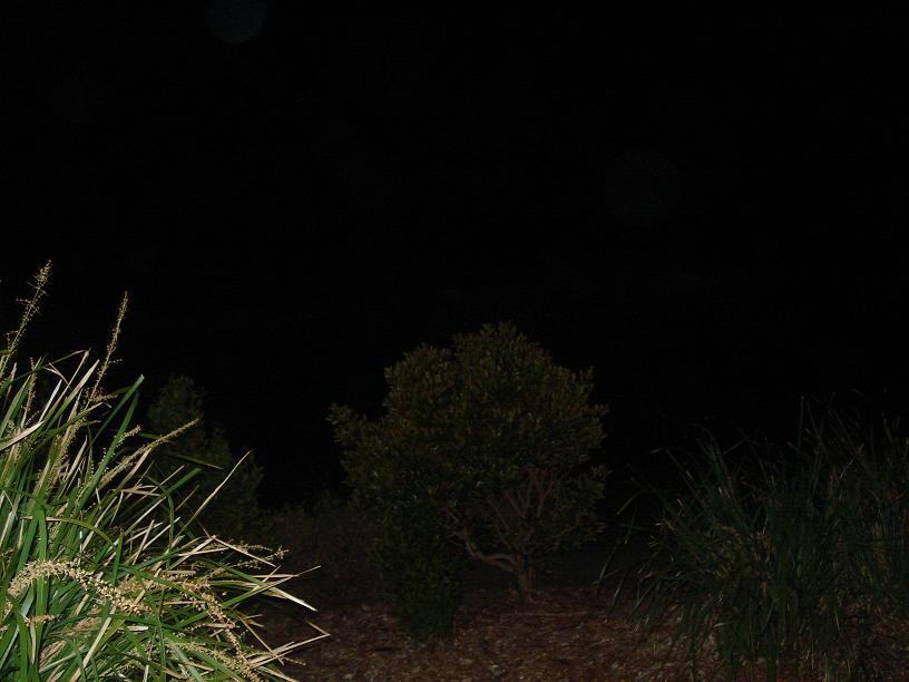 http://forum.noblerealms.org/pics/1507_hiking_australia_098.jpg